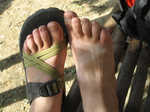 Chaco tan/dirt lines - the Kiva Fellow tattoo