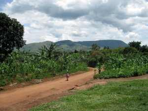 The hillside in Ibanda