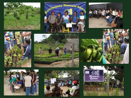 Workshop on Growing Ornamental Plants