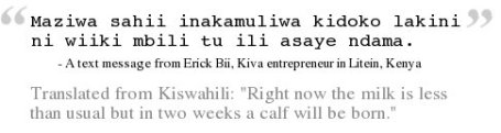 """SMS from Erick: """"Right now the milk is less than usual, but in two weeks, a calf will be born"""""""