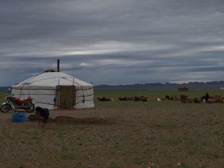 Herding ger in Omnogovi Province