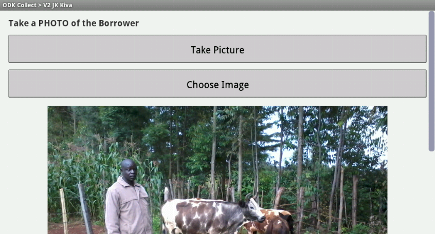 Photo capture integrated with the survey