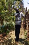 11) Maua Branch - SMEP Borrower Naman - now grows Miraa for sale and export