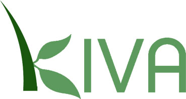 Kiva, bringing people together, even on airplanes