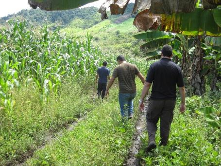trekking through the fields