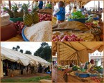 Market collage6