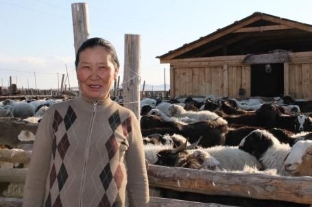 Tsetsee and her new barn